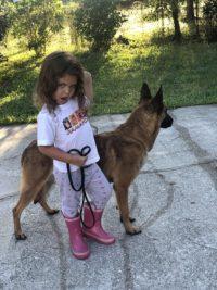 Marko Family Protection Dog