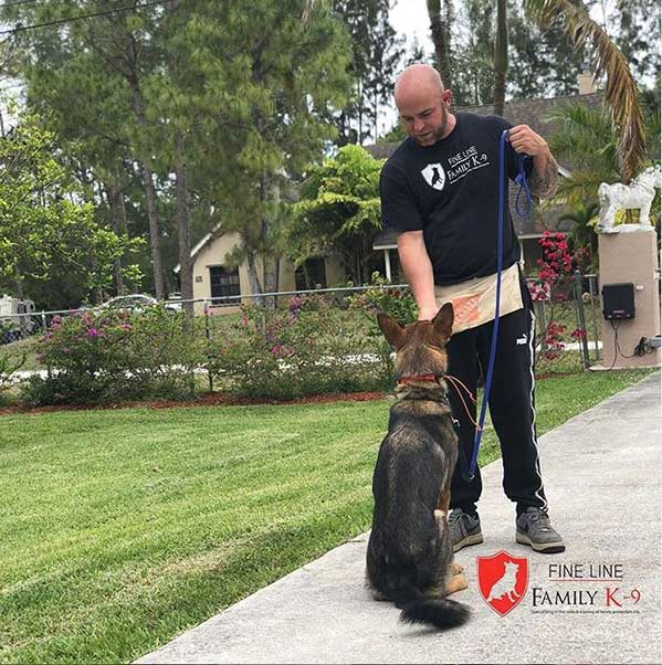 Steve Family Protection Dog Trainer