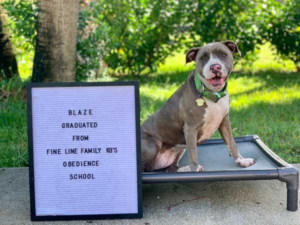 Blaze Board & Train Graduate