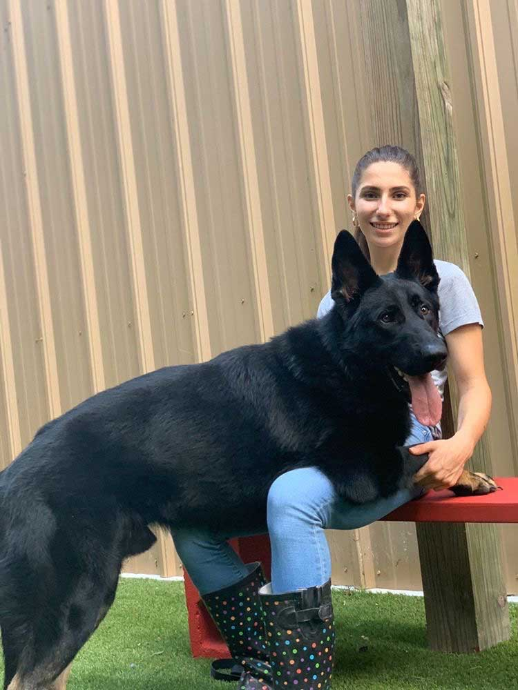Service Dogs & Therapy Dogs